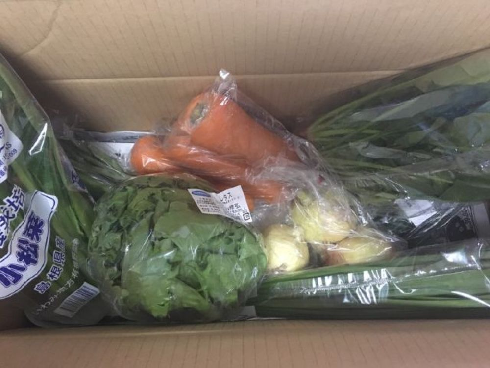 届いた野菜