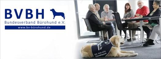 Bundesverband Bürohund über uns
