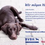 Aushang: Hunde vor Hitze schützen