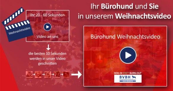 Bundesverband Bürohund: Weihnachtsvideo 2015