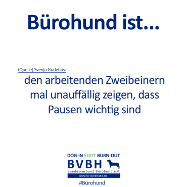 B-Hund_ist_Gudehus