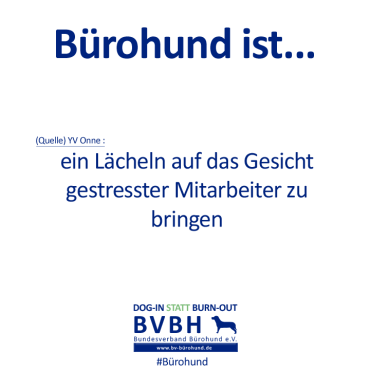 B-Hund_ist_Onne