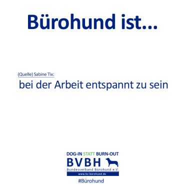 B-Hund_ist_Tix