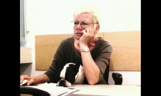 Welthundetag 2016 - Bürohund Helene