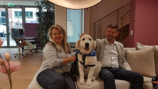 Axel Springer Interview Bürohund