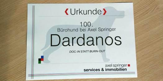 Urkunde 100. Bürohund Axel Springer