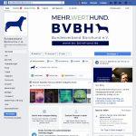 Bürohund Facebook