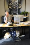 Telefonische Beratung Integration Bürohund