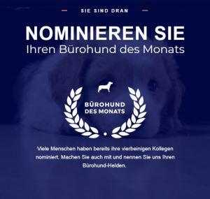 Den eigenen Hund zum Bürohund des Monats nominieren