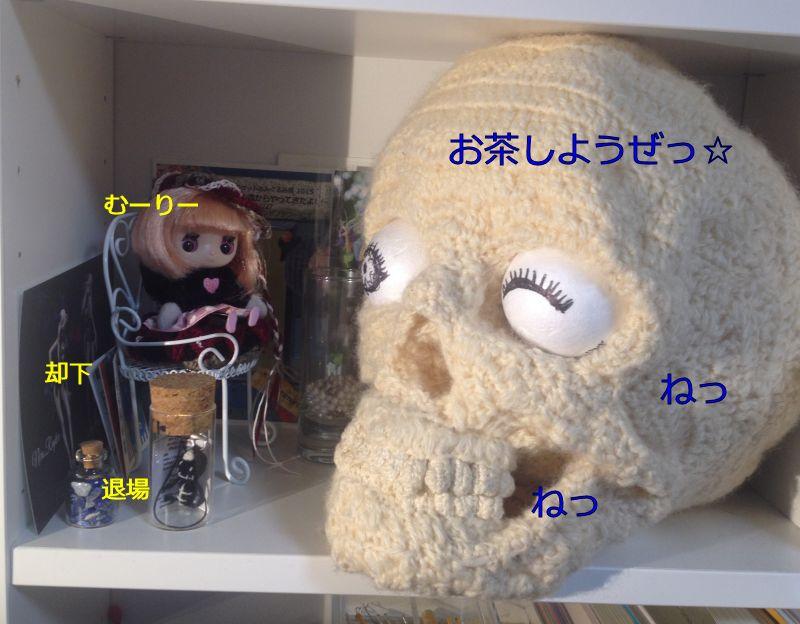 11/1~11/30:2か月目 アクセス解析 人気記事TOP5は!?