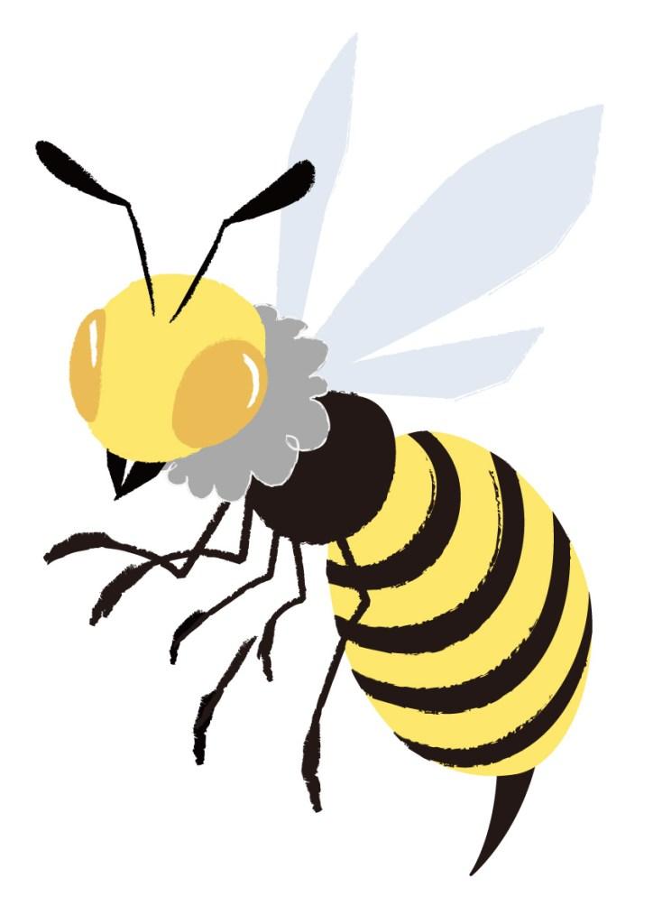 スズメバチ 天敵
