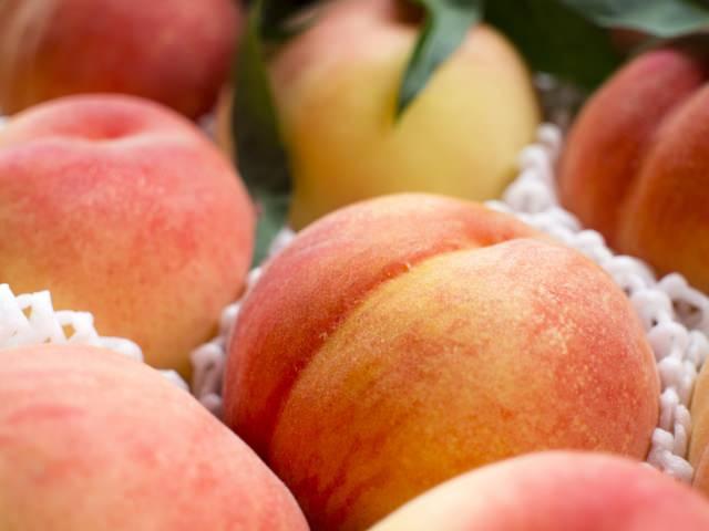 長野県の桃狩りの時期と食べ放題のあるおすすめ人気スポット!