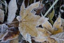 立冬の候 意味
