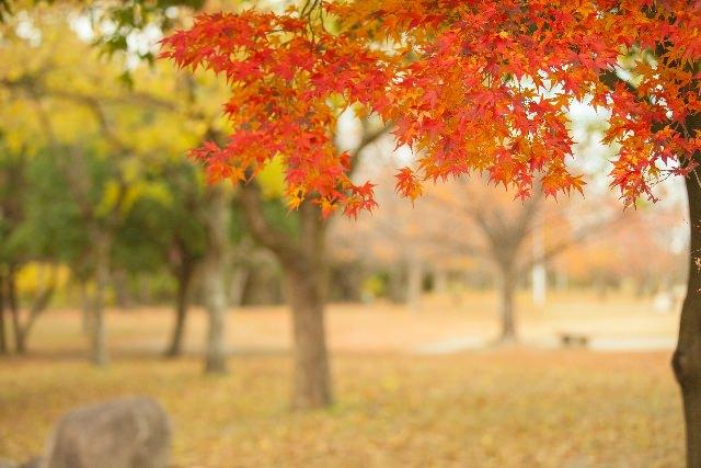 季秋の候 意味