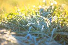 霜秋の候 意味