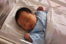 梅雨 赤ちゃん 布団