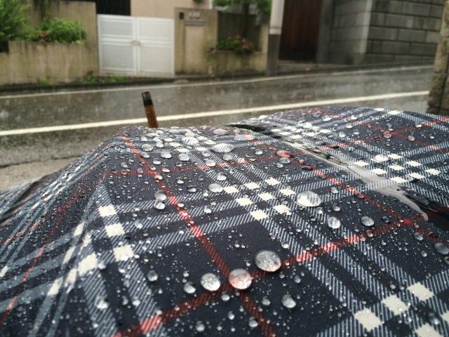秋の長雨 意味