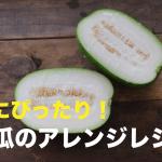 冬瓜アレンジレシピ