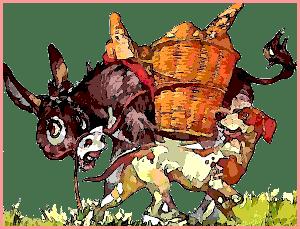 burro y perro amigos felices jugando