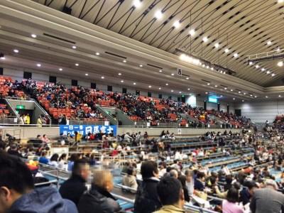 大相撲 春場所 三月場所 大阪場所 大阪府立体育館 チケット 座席 写真