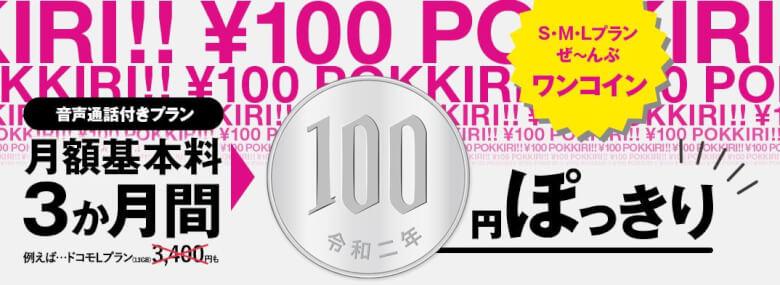 3ヶ月間100円キャンペーン