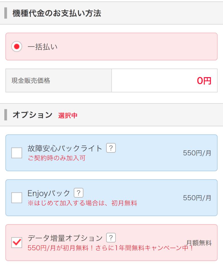 オプションの選択