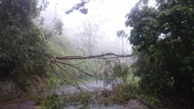 Altomirandinos amanecieron sin energía eléctrica, agua ni internet