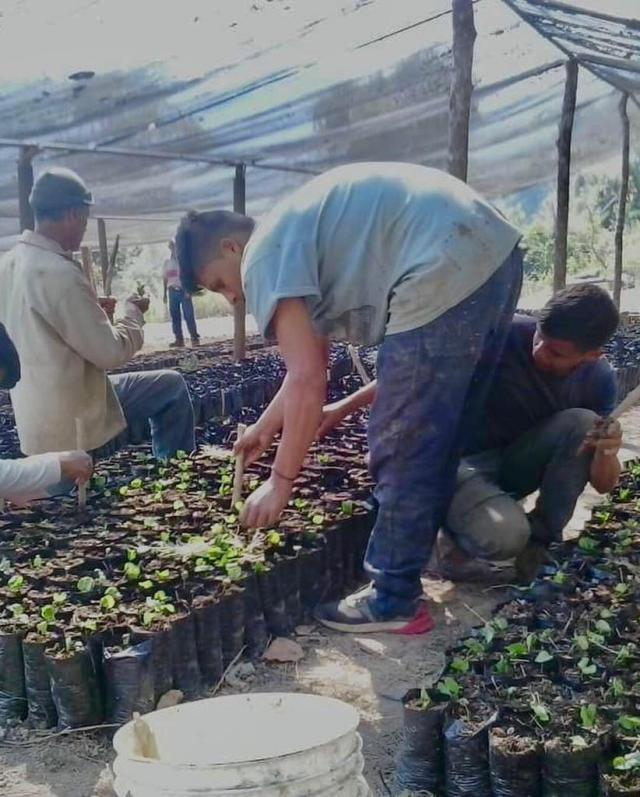 """Califican de """"infundadas"""" acusaciones de """"ecocidio"""" en terreno ubicado en Colinas de Carrizal"""