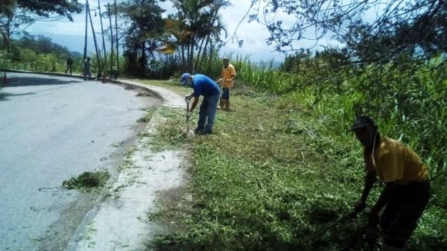 Dirección de Mantenimiento Municipal realiza desmalezamiento en El Limón