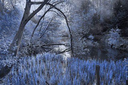 Blau am See