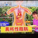 NHKあさイチ 筋肉に脂肪が貯まっていく!異所性脂肪って?
