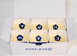 ウメダチーズラボ大阪 スプーンで食べるチーズケーキは6種類