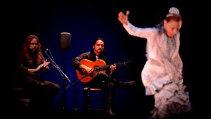Manuel Montero guitarrista flamenco