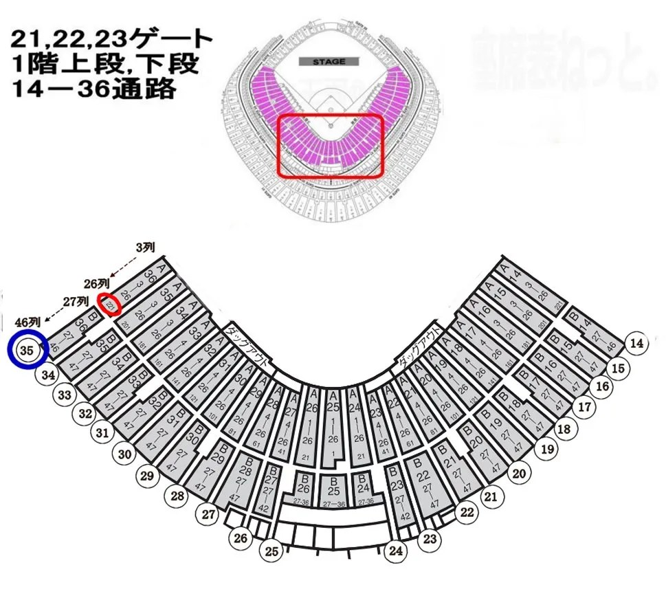 東京ドーム 21,22,23ゲート  1階上段 14から36通路 1階下段 14から36通路 詳細座席表
