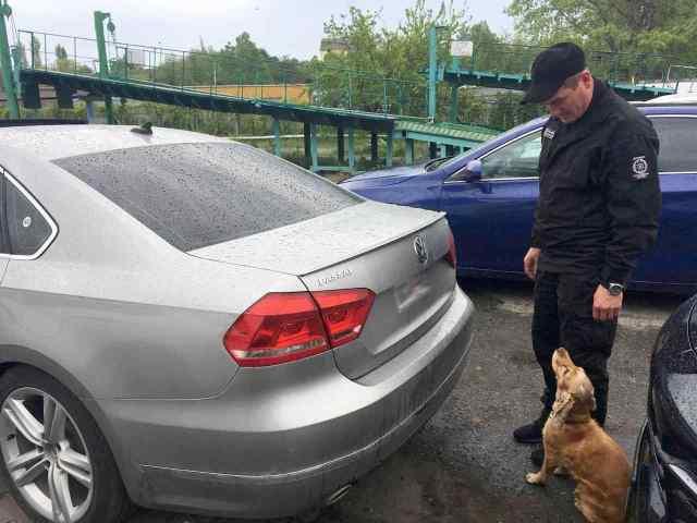 В Черноморском порту пес пограничников нашел контрабандный табак для кальяна. Фото