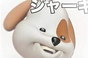 ジャーキー犬アプリ