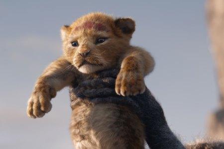 【8/9(金)公開】ライオンキング|アニメーションやミュージカルなどで人気の名作を、『アイアンマン』シリーズなどのジョン・ファヴロー監督が実写映画化。