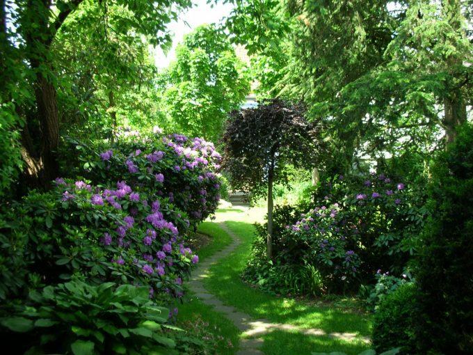 Gartengestaltung - naturnaher Garten