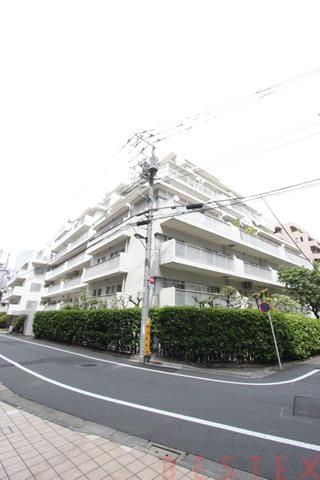 藤和湯島コープ 5階