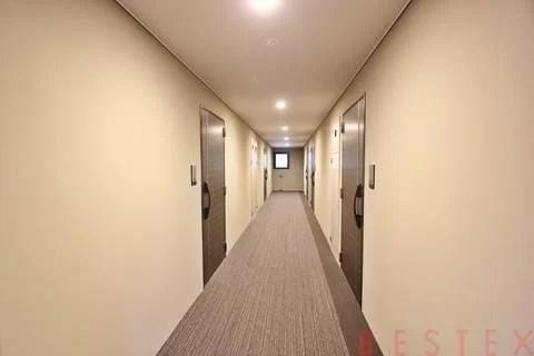 内廊下絨毯敷