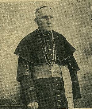 Саша Недељковић: Соколски бискуп Франо Ућелини-Тица