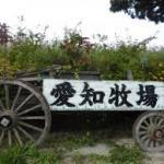 【予約必須!】愛知牧場のバーベキューを手ぶらで楽しむ方法は?