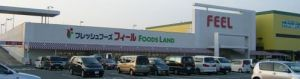 20080719feel_foods_land