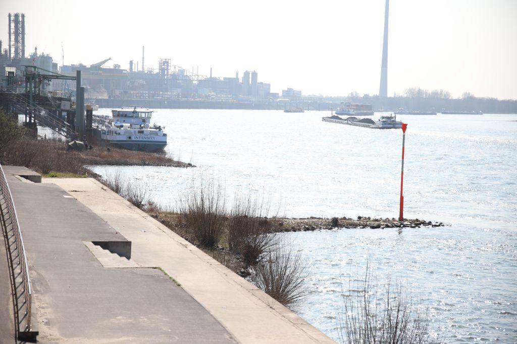 Buhnen am Rhein in Leverkusen