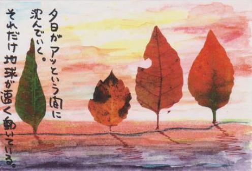 葉っぱの風景
