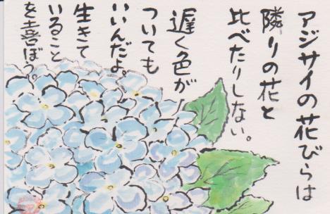 アジサイの絵手紙3