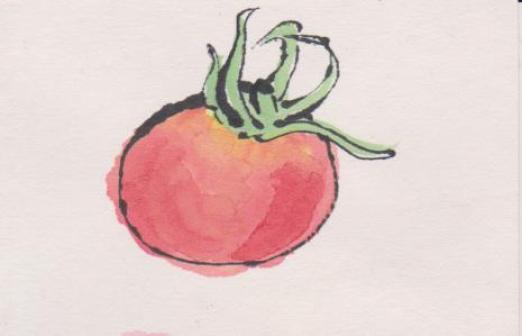 ミニトマトの絵ー9