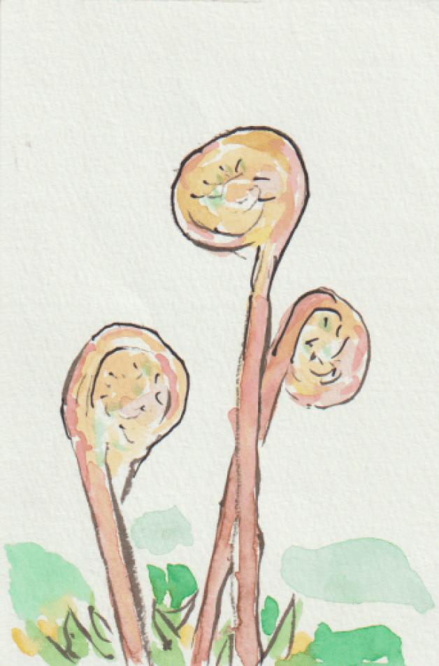 山菜・ぜんまいの絵ー2