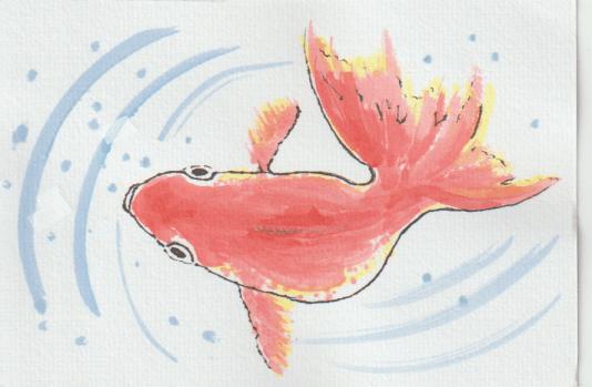 金魚の絵13