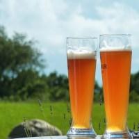ビールと発泡酒の味や見分け方について<値段の違い>